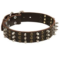Dog Spikes and Studs Rows Leather Dog Collar