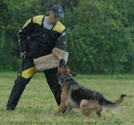 bite sleeve cover for schutzhund,police training