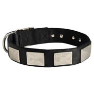 Nylon Dog Collar Massive Nickel Plates
