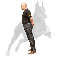 Agitation scratch pants for dog trainer