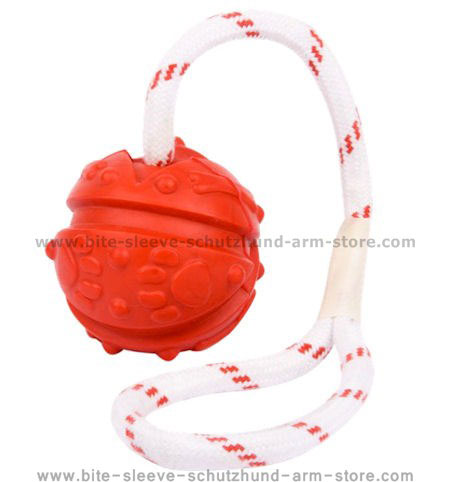 Similar to Everlasting Fun Ball on a Rope for police dogs